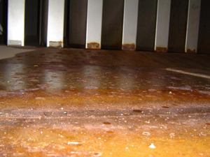 Corrosion damage of stainless steel from salt